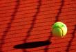 Tennisball 110x75 - Angelique Kerber will zurück an die Spitze