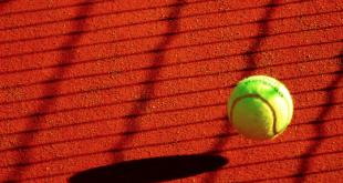 Tennisball 310x165 - Angelique Kerber will zurück an die Spitze