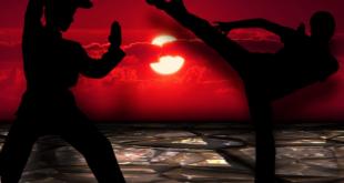 Kung Fu 310x165 - Die Kung Fu Holzpuppe – sie ist ein Symbol